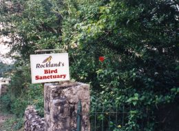 rockland-bird-sanctuary